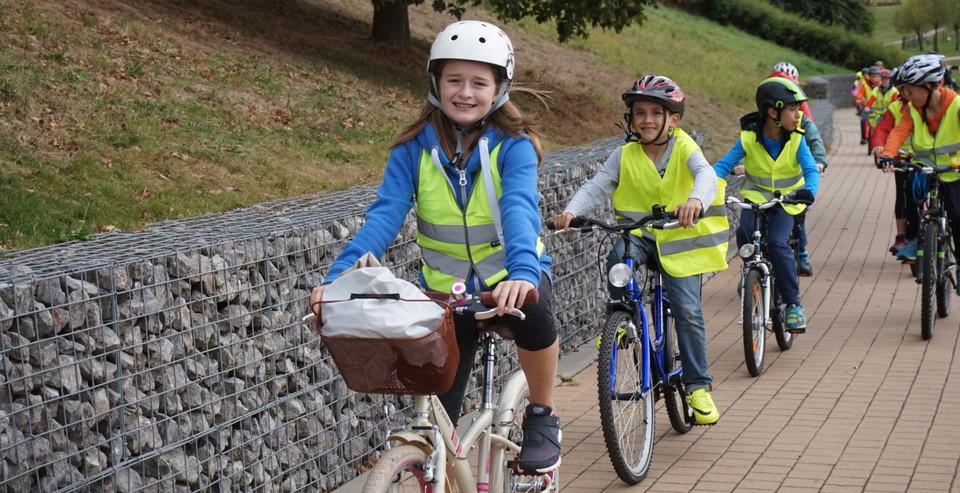pro_velo_bike_bicycle_brevet_du_cycliste_education