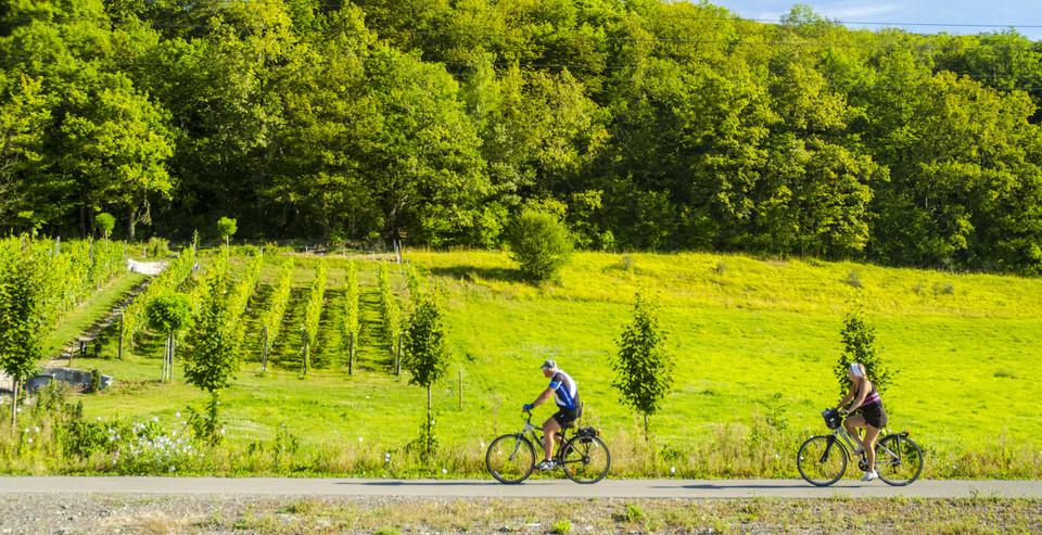 pro_velo_bike_bicycle_euro_velo_study_eurovelo